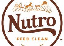 5 Best Nutro Dog Foods (Reviews Updated 2021)
