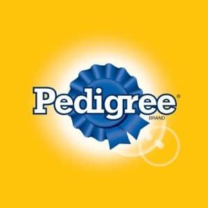 5 Best Pedigree Dog Food Reviews