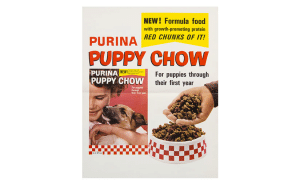 5 Best Purina Dog Food Reviews
