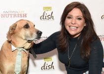 5 Best Rachael Ray Nutrish Dog Food Reviews (Updated 2020)