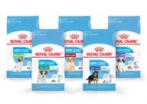 5 Best Royal Canin Dog Food Reviews