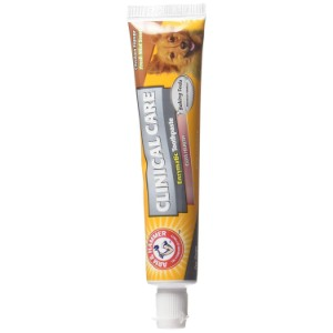 Arm & Hammer Dog Dental Care Toothpaste Product Image