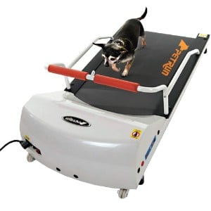 Gopet Petrun Pr700 Dog Treadmill Product Image