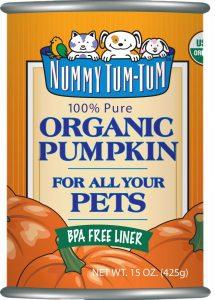 Nummy Tum Tum Pure Pumpkin