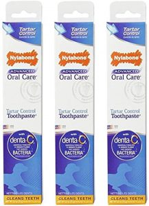 Nylabone Advanced Oral Care Peanut Flavored Natural Dog Toothpaste
