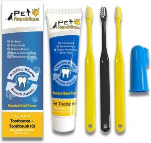 Pet Republique Dog Toothpaste Kit