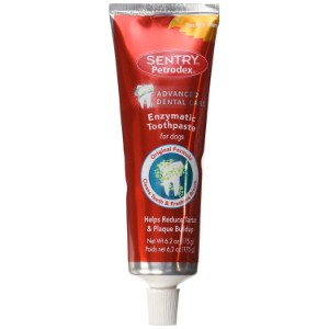 Petrodex Enzymatic Toothpaste Product Image