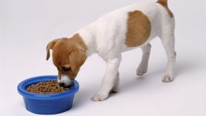 5 Best Low Sodium Dog Food Reviews