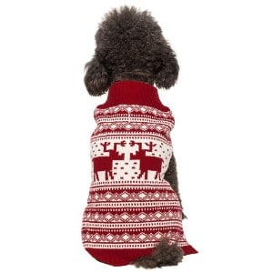 5 Best Dog Sweater Reviews (Updated 2019) 5