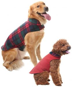 Scenereal Dog Winter Clothes