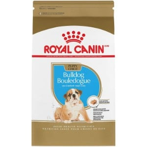 Royal Canin Breed Health Nutrition Bulldog Puppy Dry Dog Food Product Image