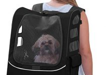 5 Best Dog Carriers (Reviews Updated 2021)