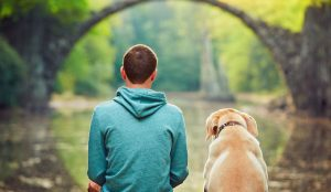 5 Best Dog Urn And Casket Reviews