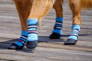 Bark Brite New Lightweight Neoprene Paw Protector Dog Boots
