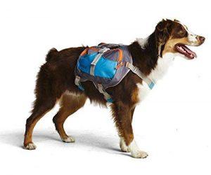 Cesar Millan Dog Backpack