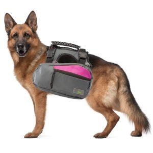 Go Fresh Pet Trail Pack Backpack