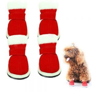 Riccioofy Dog Shoes