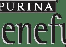 5 Best Beneful Dog Foods (Reviews Updated 2021)