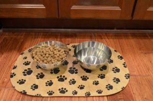 5 Best Dog Placemat Reviews