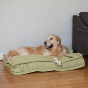 5 Best Pillow Dog Bed Reviews