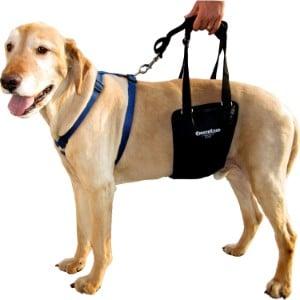 Gingerlead Support & Rehabilitation Unisex Dog Lifting Sling Harness