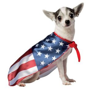 Are There Dog Foods Made Only In The Usa