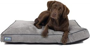 Better World Pets First Quality Orthopedic Dog Bed