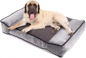Pecute Large Dog Bed