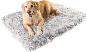 Treat A Dog Puprug Orthopedic Dog Bed