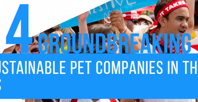 Sustainable Pet Companies