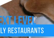 14 Dog Friendly Restaurants