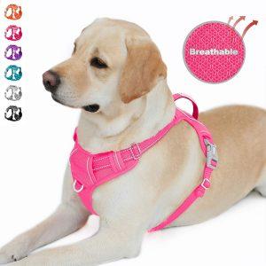 Barkbay No Pull Large Dog Harness