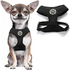 Bingpet Small Mesh Dog Harness