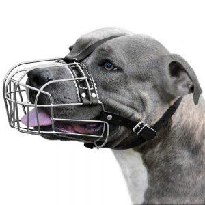 Bronzedog Dog Muzzle