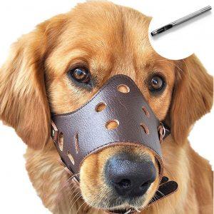 Barkless Dog Muzzle Leather