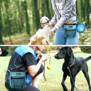 Dog Treat Carrying Pouch with Internal Hook and Loop Pockets and Carabiner Clip