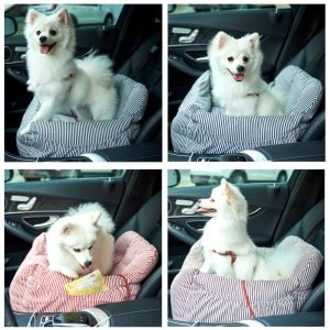 Best Travel Dog Bed Reviews
