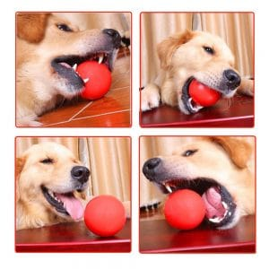 Bojafa Indestructible Dog Ball