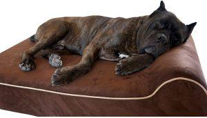 Bully Beds Heavy Duty Orthopedic Memory Foam Dog Bed