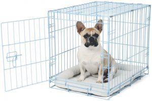 Carlson Pet Deluxe Pet Crate Small