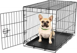 Carlson Pet Products Secure And Foldable Single Door Metal Small Dog Crate