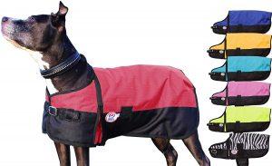 Derby Originals Medium Weight Waterproof Ripstop Dog Coat