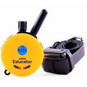 Educator E Collar Remote Dog Training Collar