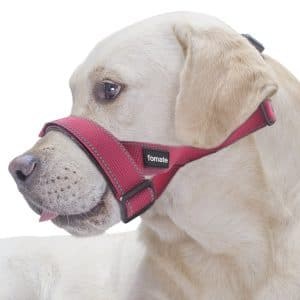 Fomate Reflective Safety Dog Muzzle