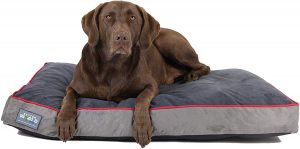 First Quality Large Orthopedic Dog Bed