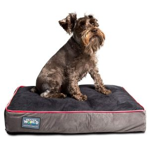 First Quality Small Orthopedic Dog Bed