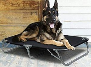 Gigatent Elevated Heavy Duty Pet Cot