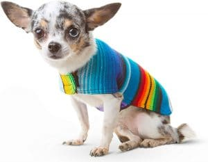 Handmade Dog Poncho From Mexican Serape Blanket