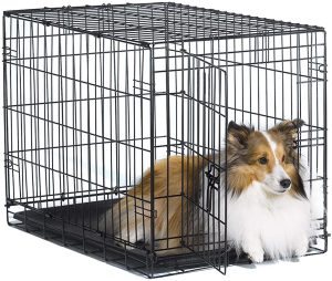 New World 24 Inch Folding Metal Dog Crate