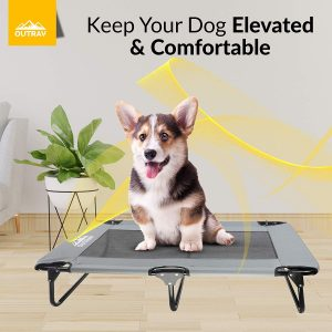 Outrav Raised Dog Cot